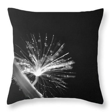 Simpliest Beauty - Bw Throw Pillow by Aimelle