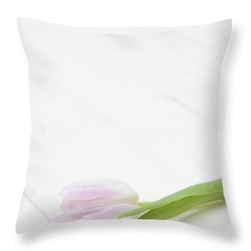 Simply Tulip Throw Pillow by Anne Gilbert