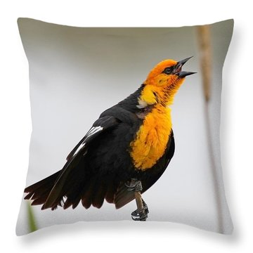 Sing A Song Throw Pillow by Athena Mckinzie
