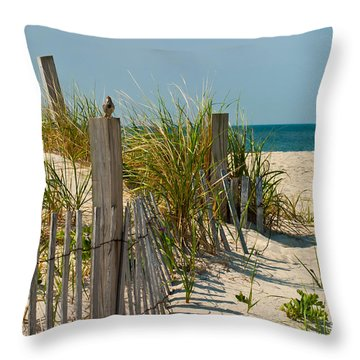 Singer At The Shore Throw Pillow by Michelle Wiarda