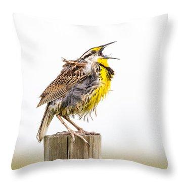 Singing Meadowlark 3rd Of 3 Throw Pillow by Bill Swindaman