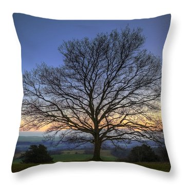 Single Bare Winter Tree Against Vibrant Sunset Throw Pillow by Matthew Gibson