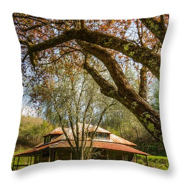 Sitting Pretty Throw Pillow by Debra and Dave Vanderlaan