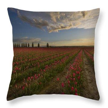 Skagit Tulip Fields Sunset Throw Pillow by Mike Reid