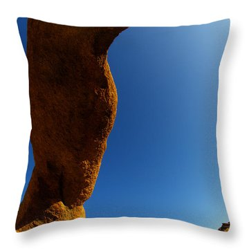 Skyward Throw Pillow by Bob Christopher