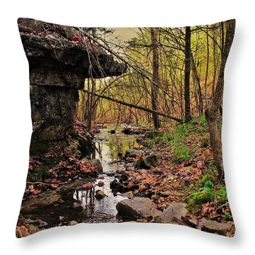 Slate Bottom Creek Throw Pillow by Benjamin Yeager