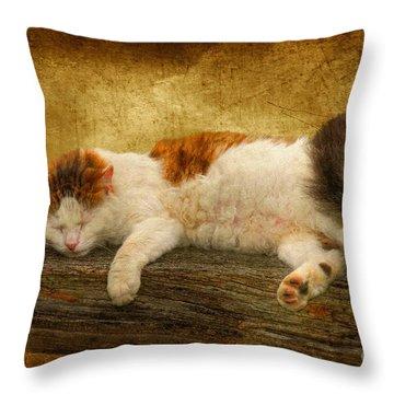 Sleepy Kitty Throw Pillow by Lois Bryan