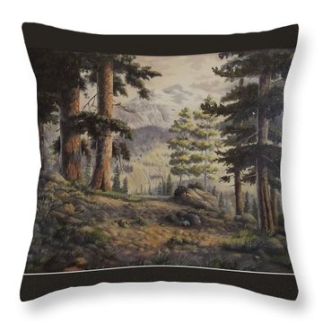 Slumgullian Pass Throw Pillow by Wanda Dansereau