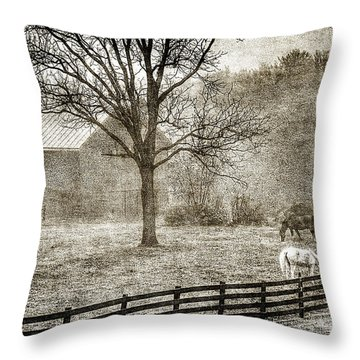Small Farm In West Virginia Throw Pillow by Dan Friend