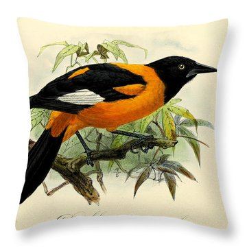 Small Oriole Throw Pillow by J G Keulemans