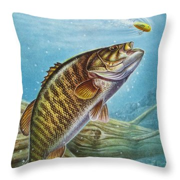Smallmouth Bass Throw Pillow by JQ Licensing