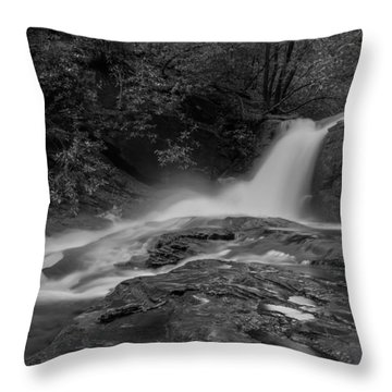 Smokey Throw Pillow by Debra and Dave Vanderlaan