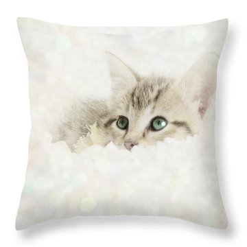 Snow Baby Throw Pillow by Amy Tyler