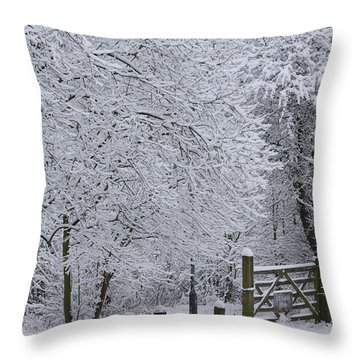 Snow Canopy Throw Pillow by David Birchall