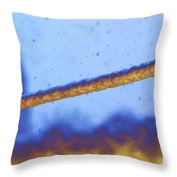 Snow On Line Throw Pillow by Carol Lynch