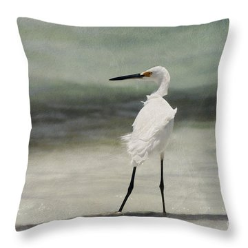 Snowy Egret Throw Pillow by John Edwards
