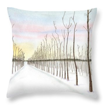 Snowy Lane Throw Pillow by Arlene Crafton