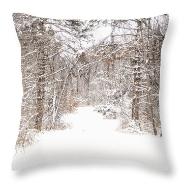 Snowy Path Throw Pillow by Mary Timman