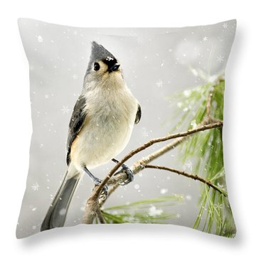 Snowy Songbird Throw Pillow by Christina Rollo