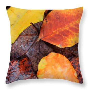 So Cal Autumn Throw Pillow by Heidi Smith