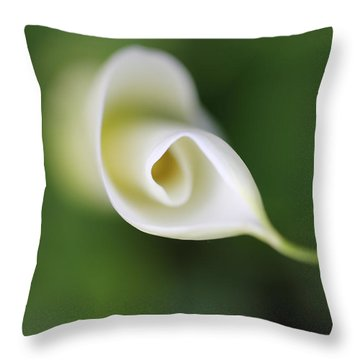 Soft Beginnings Calla Lily Flower Throw Pillow by Jennie Marie Schell