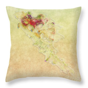Soul In Flight Throw Pillow by RC DeWinter