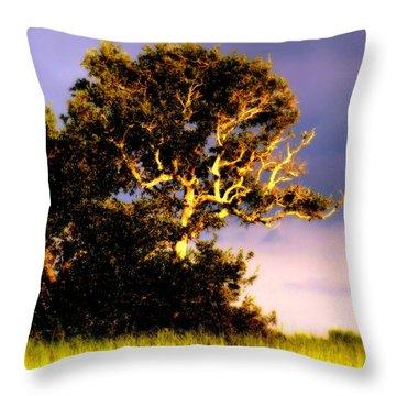 Sounds Of Topsail Throw Pillow by Karen Wiles