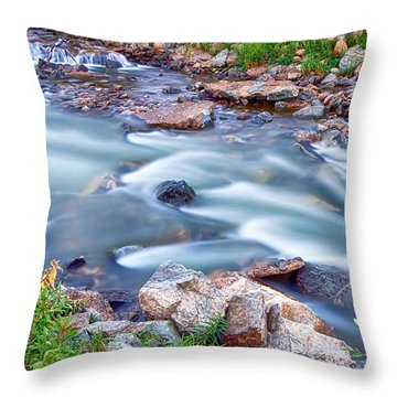 South Boulder Creek Little Waterfalls Rollinsville Throw Pillow by James BO  Insogna