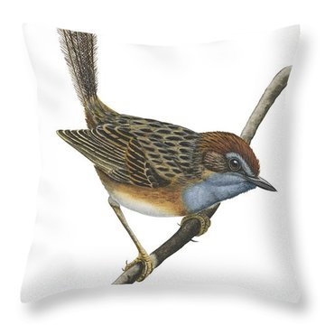 Southern Emu Wren Throw Pillow by Anonymous