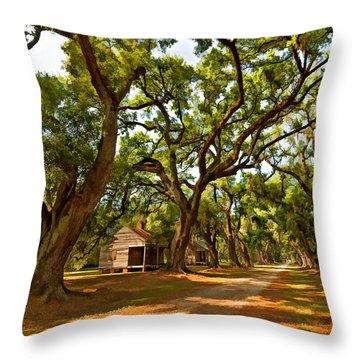 Southern Lane Paint Filter Throw Pillow by Steve Harrington