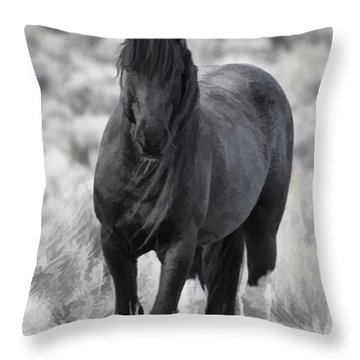 Sox D8749 Throw Pillow by Wes and Dotty Weber