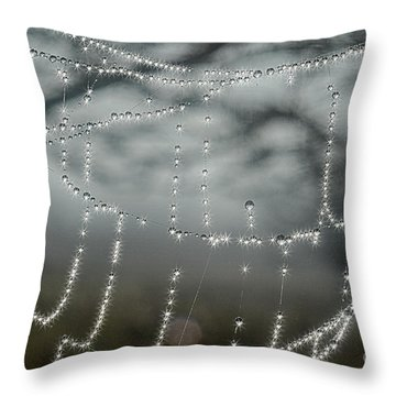 Sparkling Dew In Morning Throw Pillow by Dan Friend