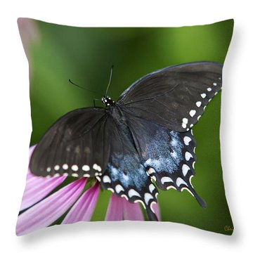 Spice Of Life Butterfly Throw Pillow by Christina Rollo