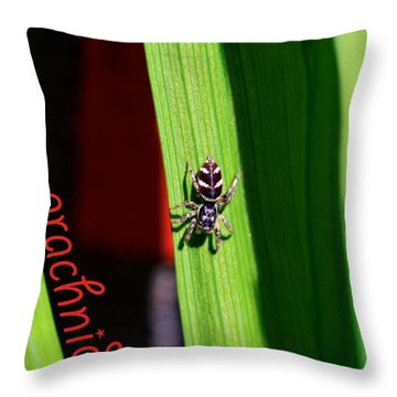 Spider On Green Leaf Throw Pillow by Toppart Sweden