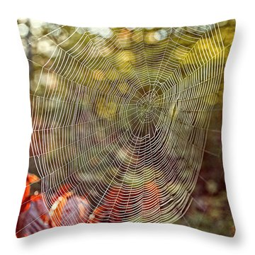 Spider Web Throw Pillow by Edward Fielding