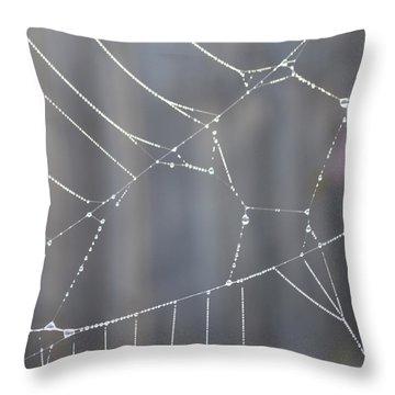 Spider Web In Rain Throw Pillow by Cheryl Miller