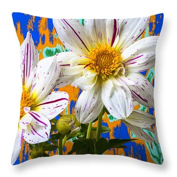 Splash Of Color Throw Pillow by Garry Gay