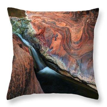 Splendor On Quail Creek Throw Pillow by Bob Christopher
