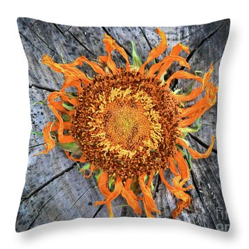 Split Sunflower Throw Pillow by Angela Wright
