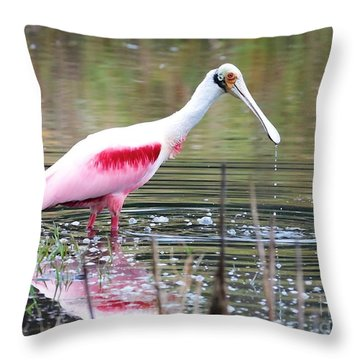 Spoonbill In The Pond Throw Pillow by Carol Groenen