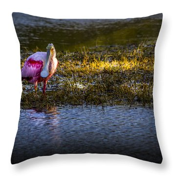 Spotlight Throw Pillow by Marvin Spates