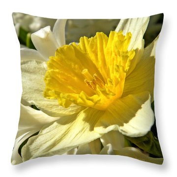 Spring Bloomers Throw Pillow by Chris Berry