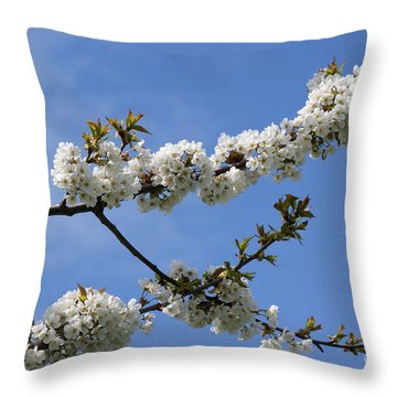 Spring Blossoms 6 Throw Pillow by Carol Lynch