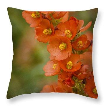 Spring Color  Throw Pillow by Saija  Lehtonen