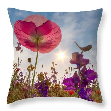 Spring   Throw Pillow by Debra and Dave Vanderlaan