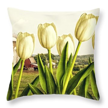 Spring Down On The Farm Throw Pillow by Edward Fielding