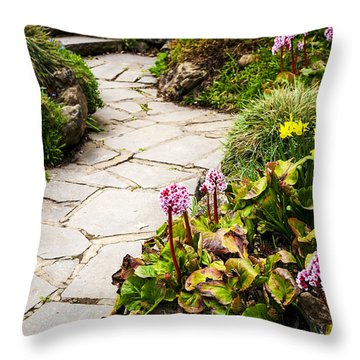 Spring Garden Throw Pillow by Elena Elisseeva