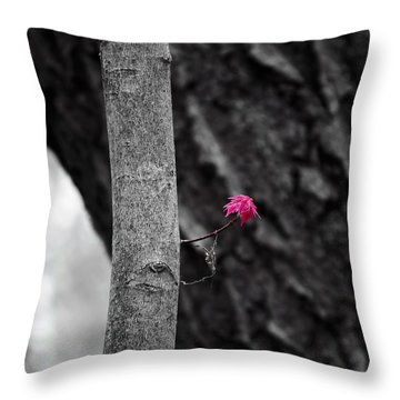 Spring Growth Throw Pillow by Steven Ralser