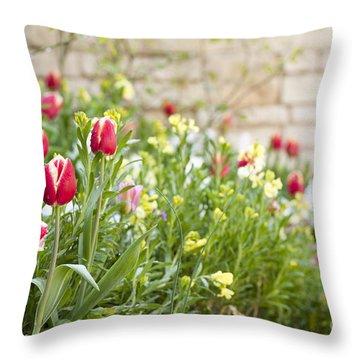 Spring Has Sprung Throw Pillow by Anne Gilbert