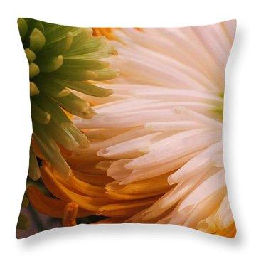 Spring Has Sprung II Throw Pillow by Anna Villarreal Garbis